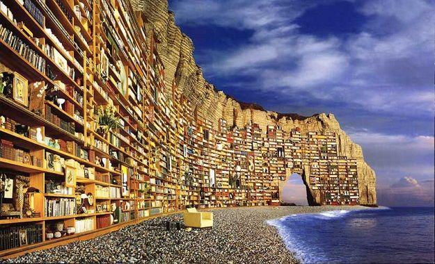 100 frasi aforismi e citazioni sui libri e la lettura for Come leggere la costruzione di progetti